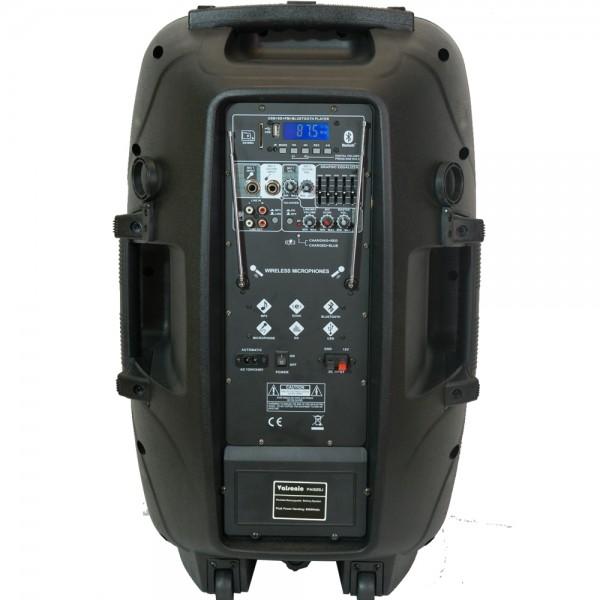 Караоке колона PA1525J - 15 инча + 2 микрофона