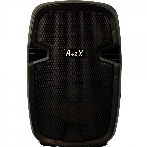 Караоке колона PS10H - 10 инча, 40W + USB